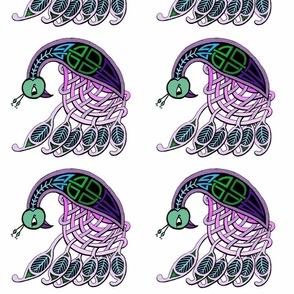 peacock FQ