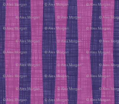 Candy Stripe:Blackcurrant