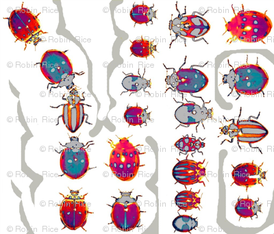 The Lives of Beetles