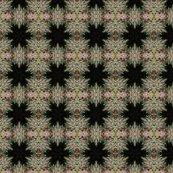 Rcd_fractals_a_shop_thumb