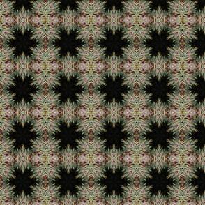 cd_fractals_A