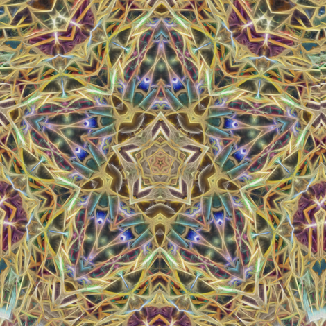 cd_fractals_E fabric by kalona_creativity on Spoonflower - custom fabric