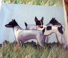 1615951_rtoy_fox_terriers_group_comment_248487_thumb