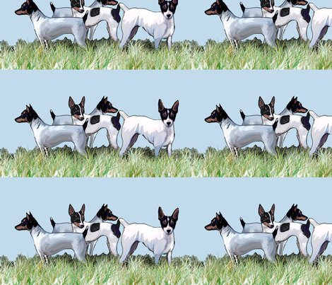 1615951_rtoy_fox_terriers_group_shop_preview