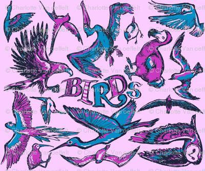 Birds Pink