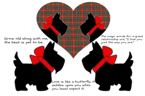 SCOTTY LOVE QUOTES PILLOW fabric by bluevelvet on Spoonflower - custom fabric