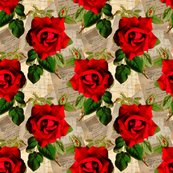 Rred_rose_on_vintage_shop_thumb