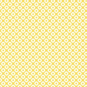 kanoko solid in citrine