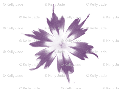 flower fade purple on white