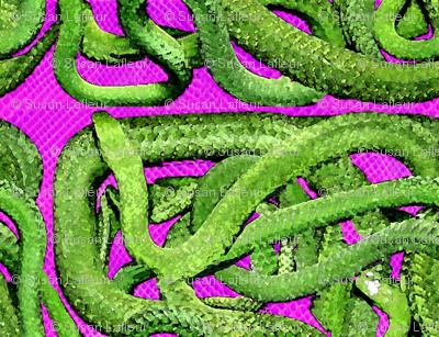 Snakes_Alive