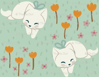 Soft Kittens