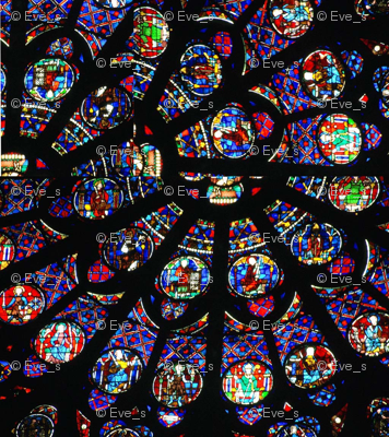 Notre Dame rose window fragments