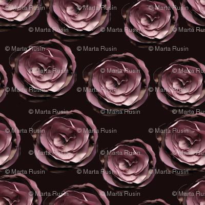 roses on dark