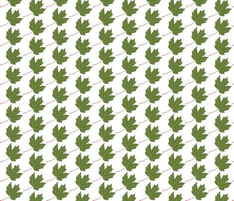 Rleaf-maple-green_shop_preview