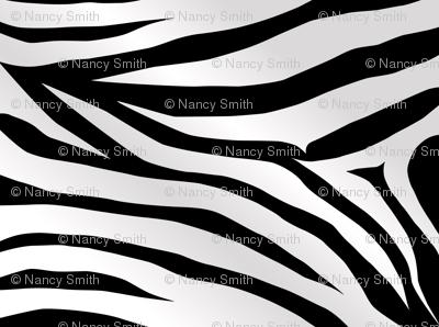 zebra-stripes-wallpaper