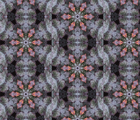 Spider Web on Coral Bells fabric by fabfabrications on Spoonflower - custom fabric