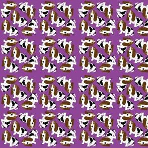 Basset Hound on Purple (Micro)