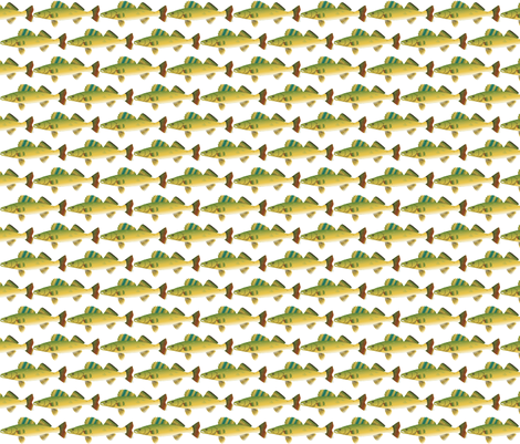 Fish-Walleye fabric by terriaw on Spoonflower - custom fabric