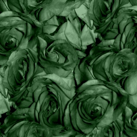 Brier Rose fabric by peacoquettedesigns on Spoonflower - custom fabric