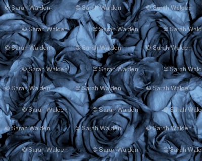 Chansons En Roses et Bleus