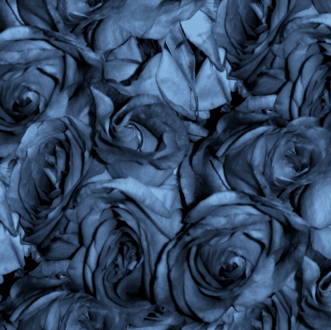 Chansons En Roses et Bleus fabric by peacoquettedesigns on Spoonflower - custom fabric