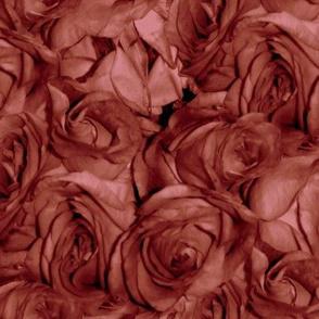 Rose' Rose