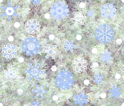 snowflakes_E_Pine_2012oilify