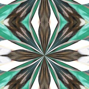 Kaleidescope 3668