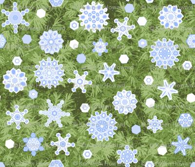 snow_shower_1638503_Pine_2012oilify_BC_VanGoh