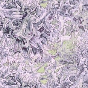 Hyacinth purple flowers