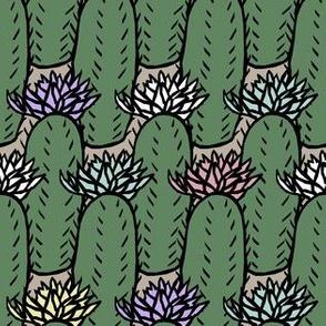 Cactus Multi