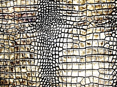 Croc Skin Bright Fabric Nascustomlife Spoonflower