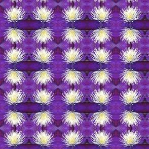 2012_07_04_3800_edited-1