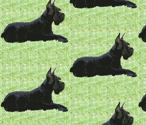 Giant Schnauzer In The Grass fabric fabric by dogdaze_ on Spoonflower - custom fabric