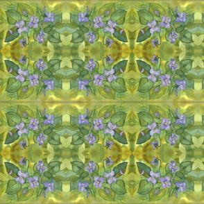 06-2011_violets
