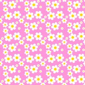 Rrfillpinkdaisy_shop_thumb