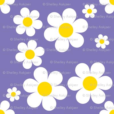 Sweetie Pie Daisy - Purple