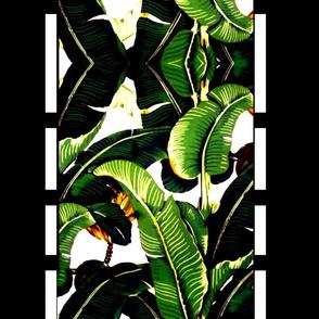 banana leaf  borderline