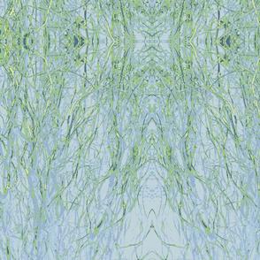Green Winter Grasses by Gary-ch