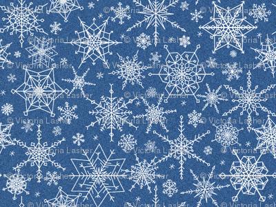 Snowflakes midst the blizzard