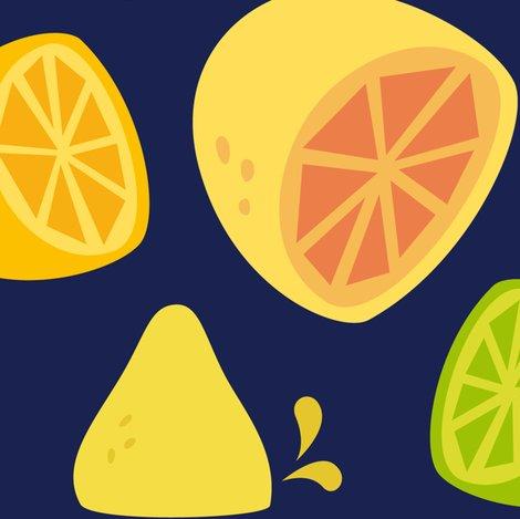 Citrus-darkblue-01_shop_preview