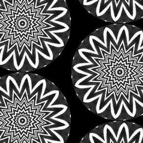 Zesty Zebra Zircles 5