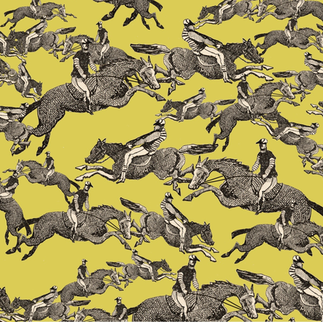 Go Henri go! fabric by ragan on Spoonflower - custom fabric