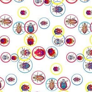 Bubble Beetles