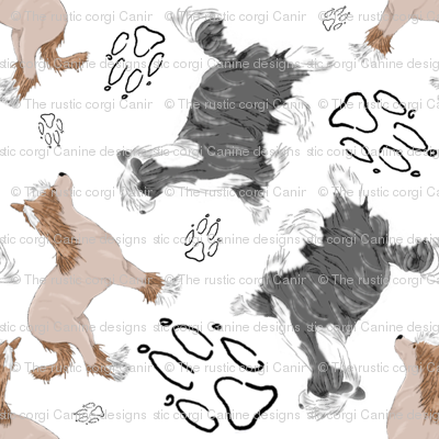 Chinese crested puppies and pawprints