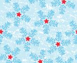 Rstar_snowflakes_thumb