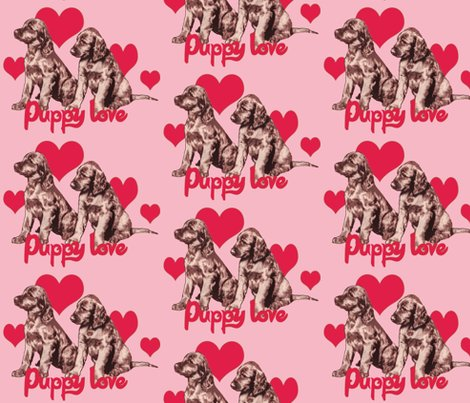 1657357_rirish_setter_puppies3_shop_preview