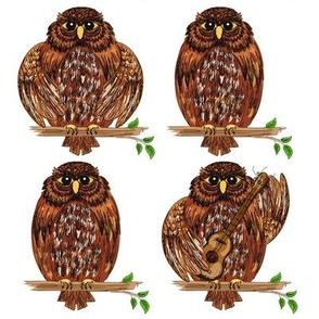 Cute Cartoon Owl Decals.