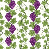 Damask_grapes_6_copy_shop_thumb