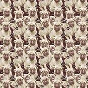 R1658990_1658990_1658990_rseamless_pugs_mural8_copy_shop_thumb